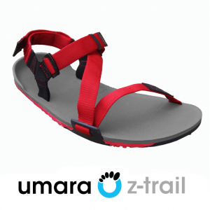 Z-Trail Men's Sandal